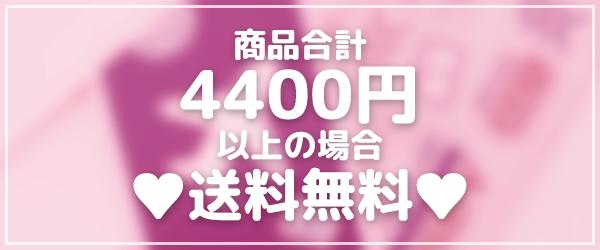 インバタ―スプリングイベント2 - 購入金額4400円以上の場合は送料無料